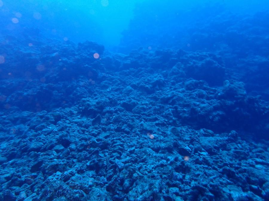 瀬底島ダイビング_06