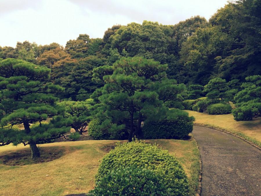大濠公園日本庭園_06