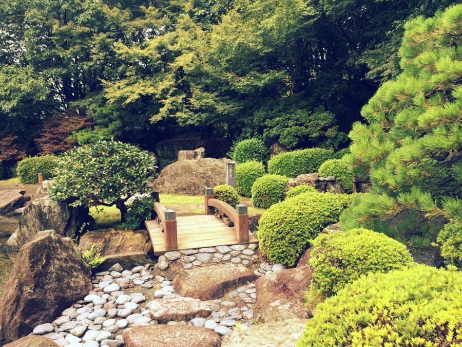 大濠公園日本庭園_10