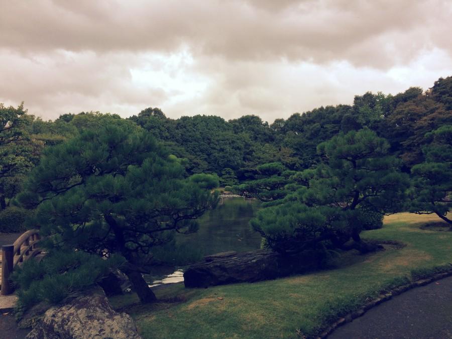 大濠公園日本庭園_05