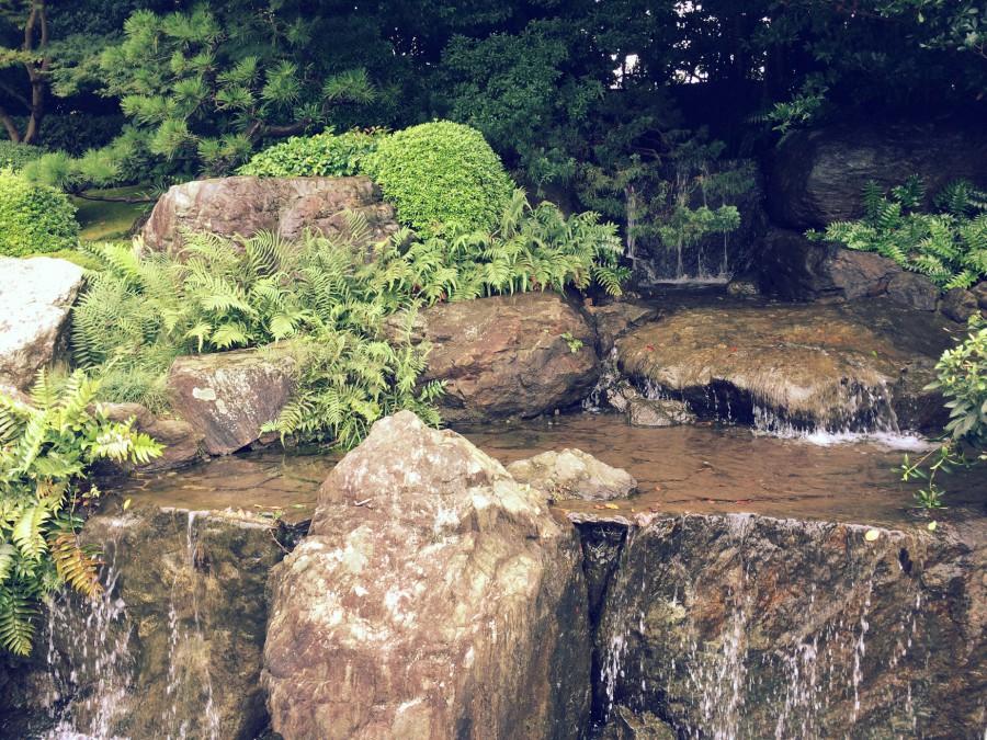 大濠公園日本庭園_08
