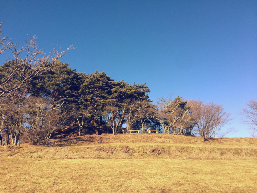 長野県上田市山家神社05