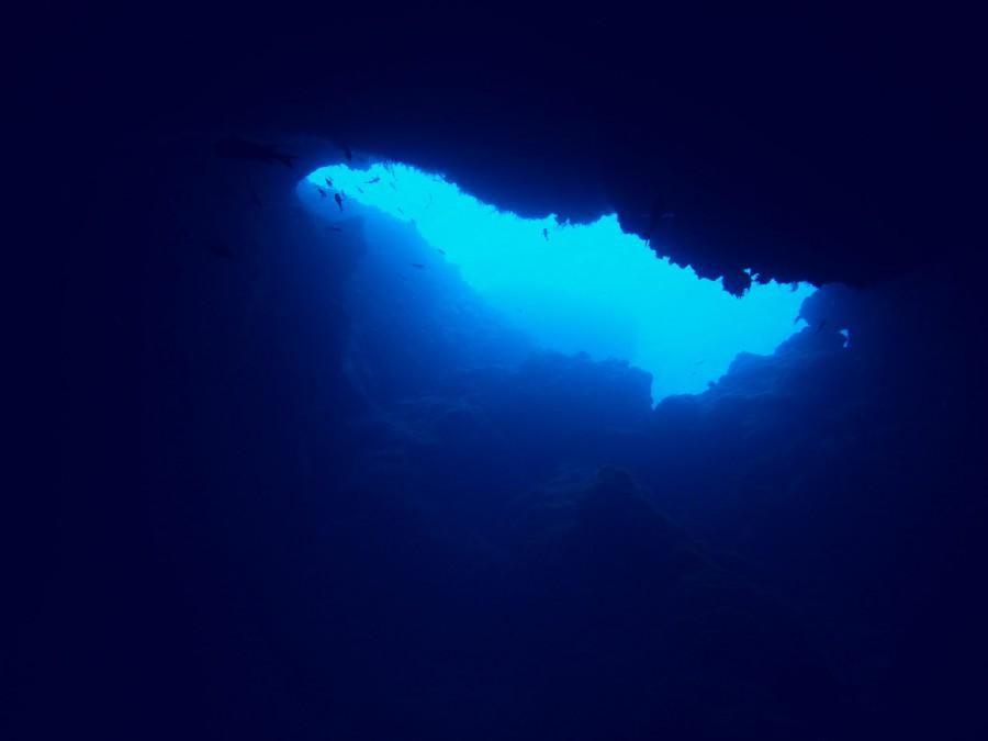 宮古島ダイビングサンゴホール_07