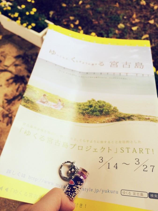 宮古島ダイビングクリスタルパーク_05