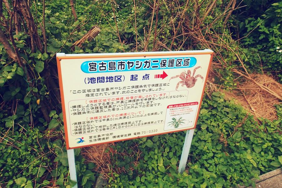 宮古島ドライブ_13