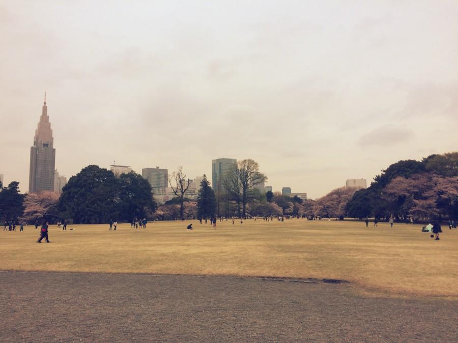 カフェラボエム新宿御苑_05