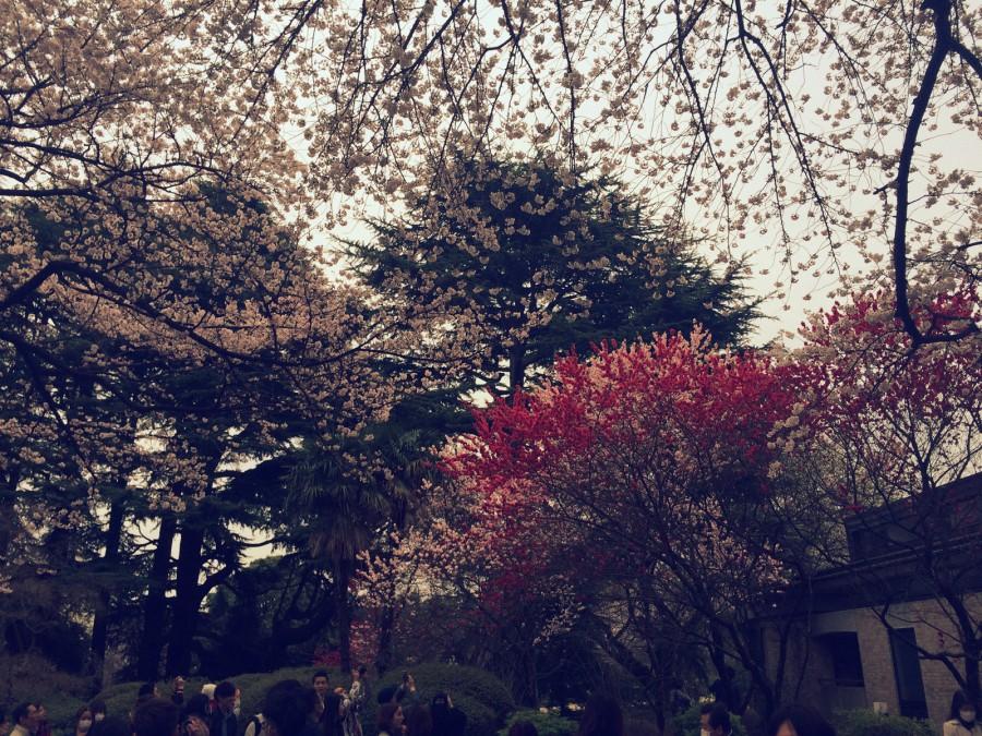 カフェラボエム新宿御苑_04
