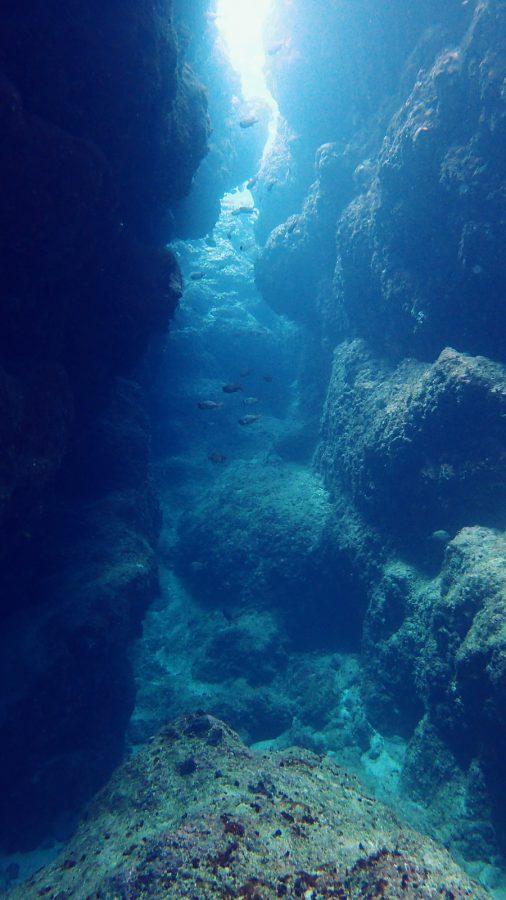 中の島チャネル_12