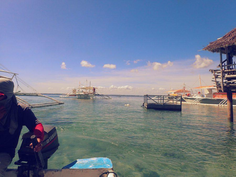 セブダイビングオランゴ島_05