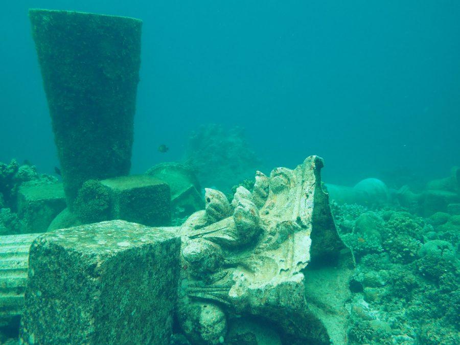 セブダイビングオランゴ島_43
