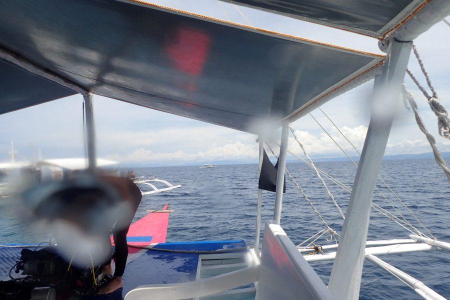 ヒルトゥガン島ダイビング_23