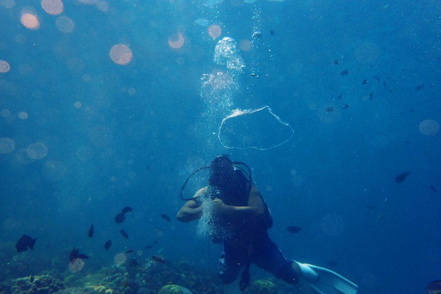 ヒルトゥガン島ダイビング_12