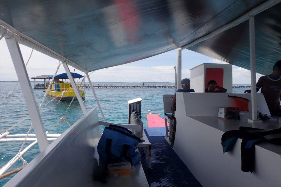 ヒルトゥガン島ダイビング_24