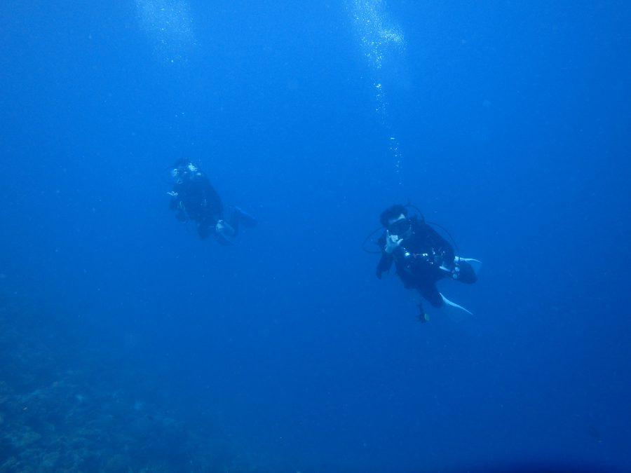ヒルトゥガン島ダイビング_34