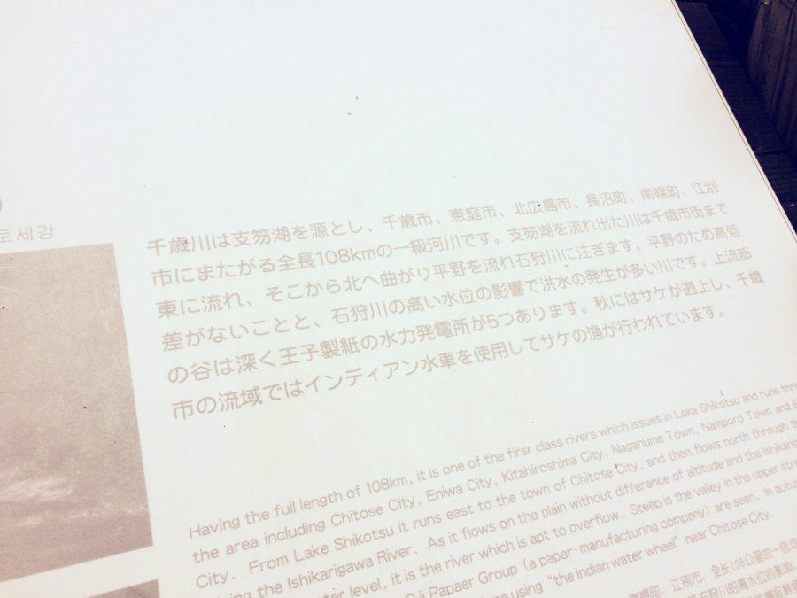 支笏湖ダイビング_78