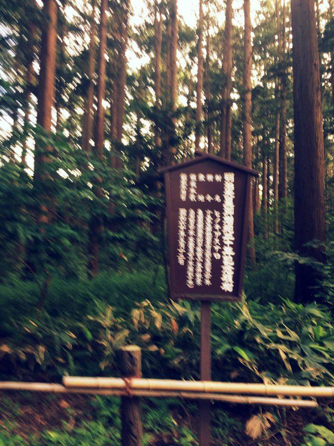 札幌散歩_22