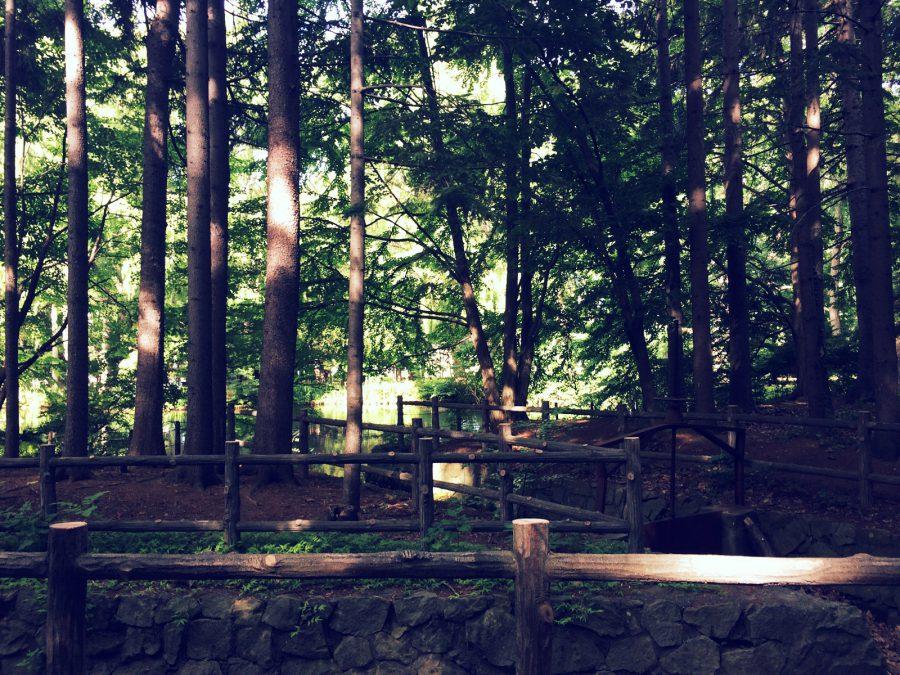 札幌散歩_09