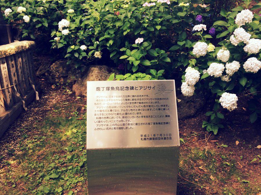 札幌散歩_10