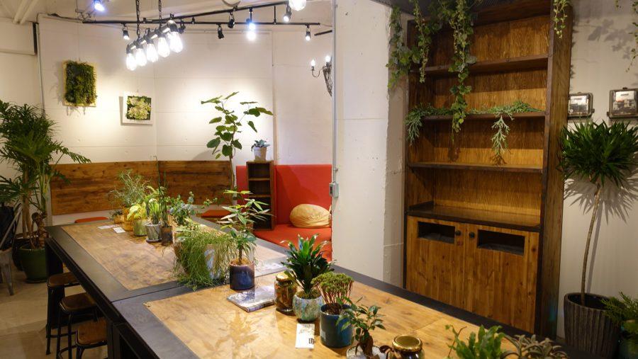 恵比寿essence cafe