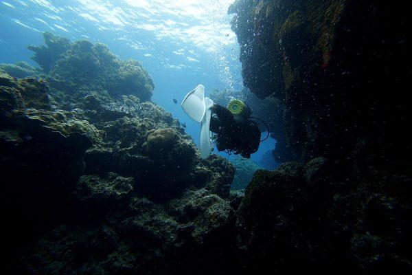 瀬底島ダイビング_26