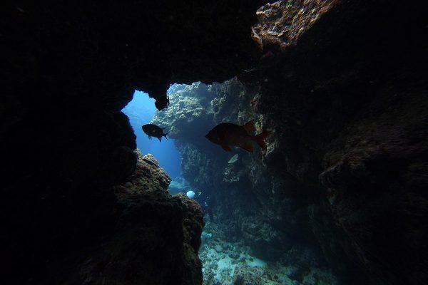 瀬底島ダイビング_25