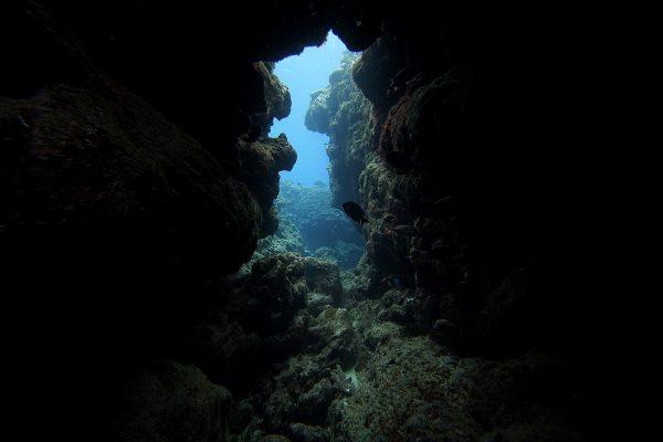 瀬底島ダイビング_24