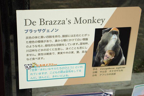 東武動物公園_22